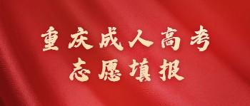 重庆成考志愿填报
