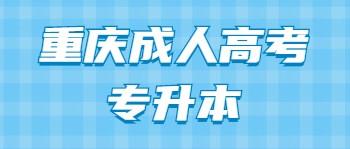 重庆成考专升本
